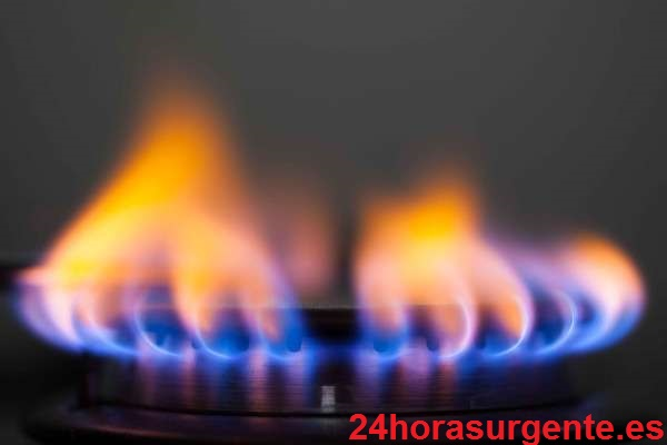 Reparar calentador de gas Cointra